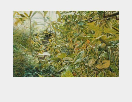 Anna Lisei Math, à travers les plantes, Öl u. Kreide auf ungrundierter Leinwand, 80 x 120 cm